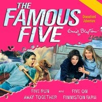 Five Run Away Together & Five on Finniston Farm - Enid Blyton