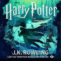 Harry Potter og ildbegeret - J.K. Rowling