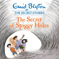 The Secret of Spiggy Holes - Enid Blyton