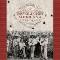 Breve historia de la Revolución Mexicana - Pedro Salmerón,Felipe Ávila
