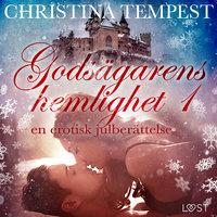 Godsägarens hemlighet 1 – en erotisk julberättelse - Christina Tempest