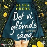 Det vi glömde säga - Klara Grede