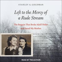 Left to the Mercy of a Rude Stream - Stanley A. Goldman