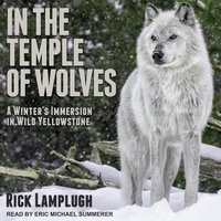 In the Temple of Wolves - Rick Lamplugh