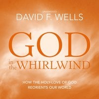 God in the Whirlwind - David F. Wells