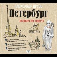Петербург: пешком по городу - Александр Друзь