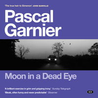 Moon in a Dead Eye - Pascal Garnier