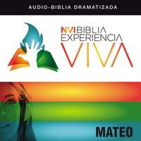 NVI Biblia Experiencia Viva: Mateo - Zondervan