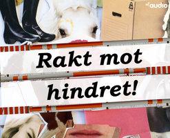 Rakt Mot Hindret - Malin Eriksson
