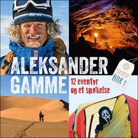 12 eventyr og et spøkelse - Aleksander Gamme