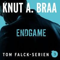 Endgame - Knut Arnljot Braa