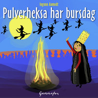 Pulverheksa har bursdag - Ingunn Aamodt