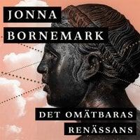 Det omätbaras renässans : En uppgörelse med pedanternas världsherravälde - Jonna Bornemark
