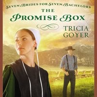 The Promise Box - Tricia Goyer