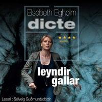 Leyndir gallar - Elsebeth Egholm