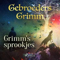 Grimm's sprookjes - De Gebroeders Grimm, Gebroeders Grimm