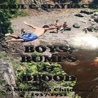 Boys, Bumps and Blood - Paul C. Slayback