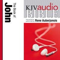 Pure Voice Audio Bible - King James Version, KJV: (30) John - Zondervan
