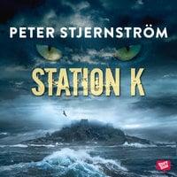 Station K - Peter Stjernström