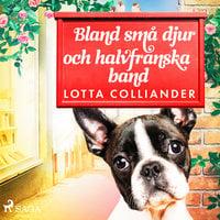 Bland små djur och halvfranska band - Lotta Colliander