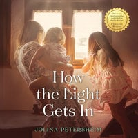 How the Light Gets In - Jolina Petersheim