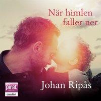 När himlen faller ner - Johan Ripås