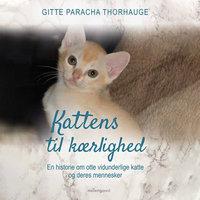 Kattens til kærlighed - En historie om otte vidunderlige katte og deres mennesker - Gitte Paracha Thorhauge