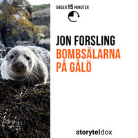 Bombsälarna på Gålö - Jon Forsling