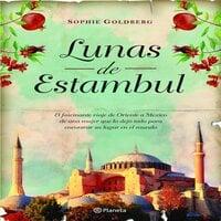 Lunas de Estambul - Sophie Goldberg