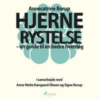 Hjernerystelse - En guide til en bedre hverdag - Annecatrine Borup, Signe Borup, Anne Mette Kærgaard Olesen