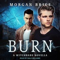 Burn - Morgan Brice