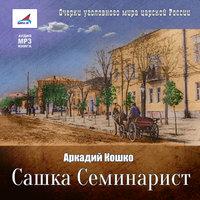 Сашка Семинарист - Аркадий Кошко