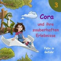 Cora und ihre zauberhaften Erlebnisse - Teil 3: Felix in Gefahr - Kigunage