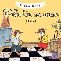 Pikku hiiri saa vieraan - Riikka Jäntti