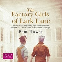 The Factory Girls of Lark Lane: Lark Lane 1 - Pam Howes