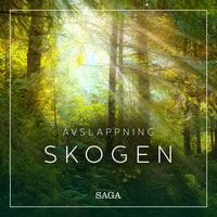 Avslappning - Skogen - Rasmus Broe