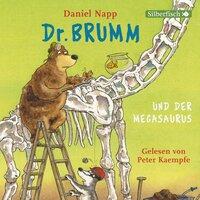 Dr. Brumm und der Megasaurus und weitere Geschichten - Daniel Napp