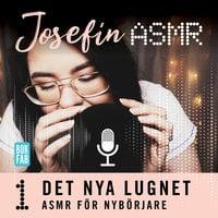 ASMR för nybörjare - Josefin ASMR