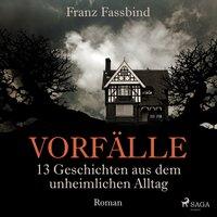 Vorfälle: Geschichten aus dem unheimlichen Alltag - Franz Fassbind