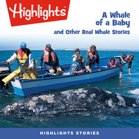A Whale of a Baby and Other Real Whale Stories - Highlights for Children