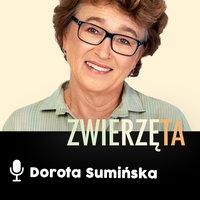 Podcast - #15 Zwierz też człowiek: Ojcostwo - Dorota Sumińska