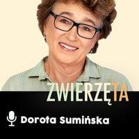 Podcast - #14 Zwierz też człowiek: Polityka - Dorota Sumińska