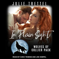 In Plain Sight - Julie Trettel