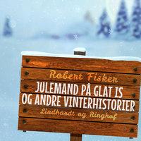Julemand på glat is og andre vinterhistorier - Robert Fisker
