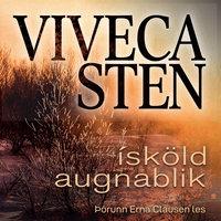 Ísköld augnablik - Viveca Sten