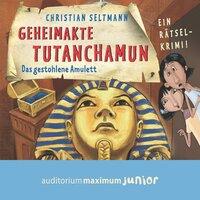 Geheimakte Tutanchamun: Das gestohlene Amulett - Christian Seltmann