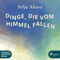 Dinge, die vom Himmel fallen - Selja Ahava