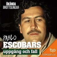 Pablo Escobars uppgång och fall - Bokasin