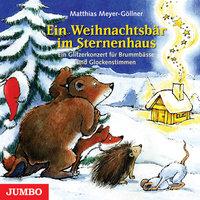 Ein Weihnachtsbär im Sternenhaus - Matthias Göllner