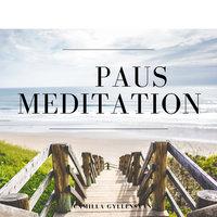 Paus - Meditation - Camilla Gyllensvan